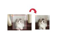 CSSだけで画像をトリミングする方法